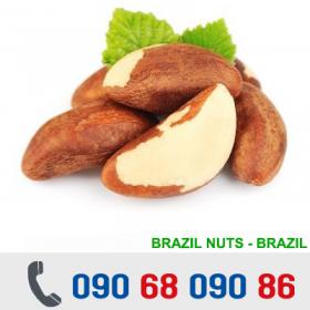 HẠT QUẢ HẠCH BRAZIL NUT - USA