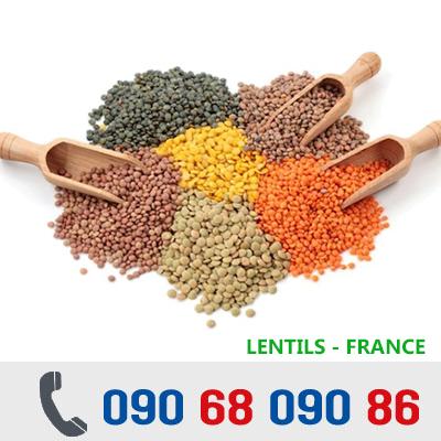 ĐẬU LĂNG KHÔ - Lentil Beans - PHÁP / MỸ