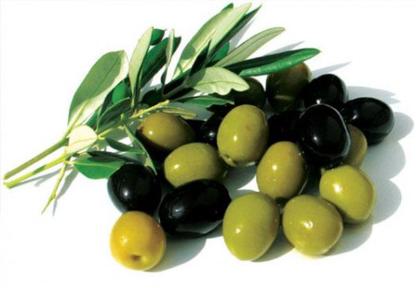 trái oliu