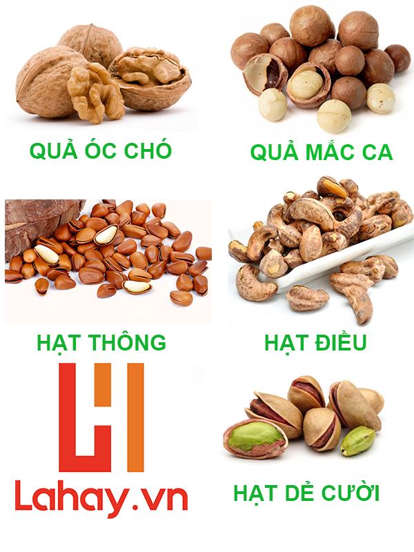 tổng hợp 5 loại hạt
